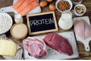 Protein to sustain energy