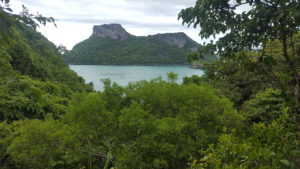 National Park views