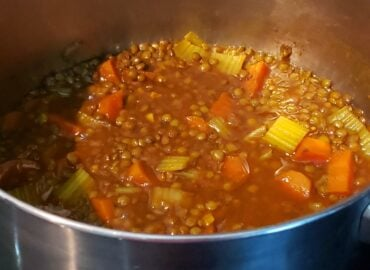French lentil vegetable daal
