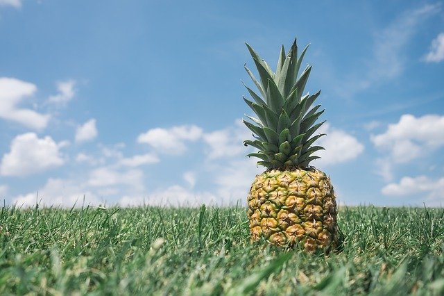 Pineapple as a symbol for infertility